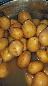 Kartoffelbraten 2016